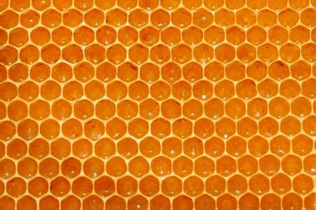 syrupy: honeycomb background