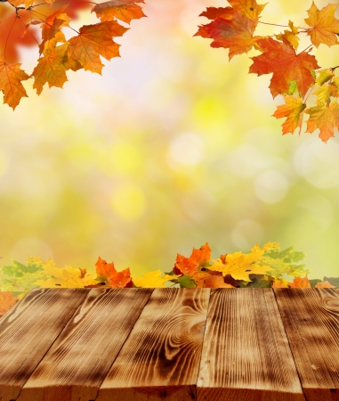 autumn background Stock Photo - 15430699