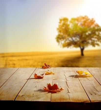 wood background texture: autumn background Stock Photo