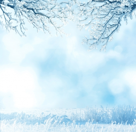 winter background Stock Photo - 15871156