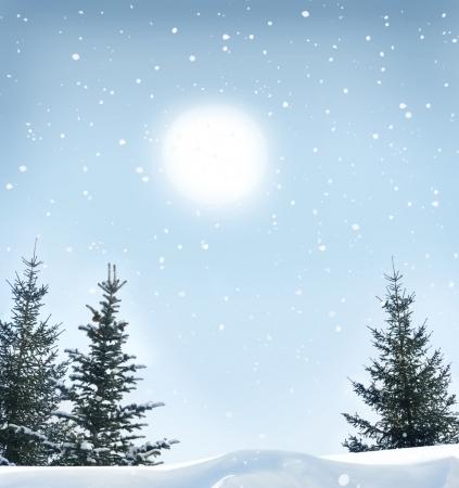 winter landscape Stock Photo - 16533139