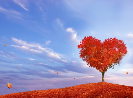 beautiful scenery: Tree of love Stock Photo