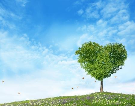사랑의 나무 스톡 콘텐츠 - 17361811