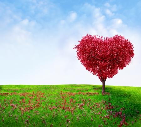 hart bloem: Boom van liefde