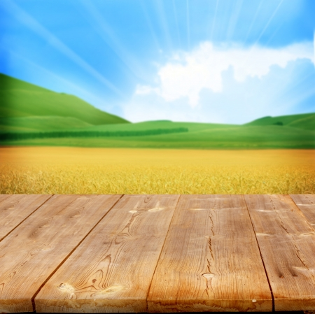agriculture background with wooden planks  photo