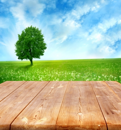 natural scenery: summer background with wooden planks