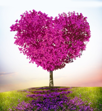saint valentin coeur: Arbre de l'amour