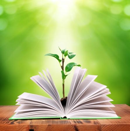 moudrost: kouzlo knihy