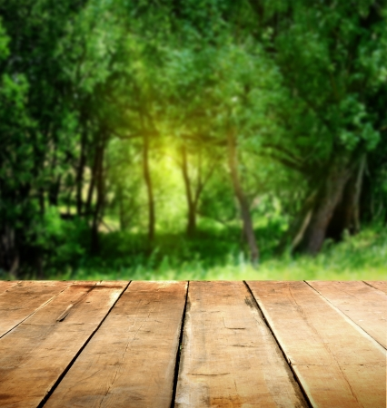 organic background: summer background with wooden planks
