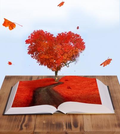 마법의 책