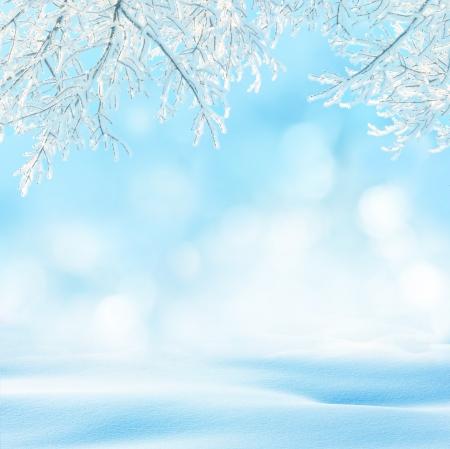 wintry: winter background
