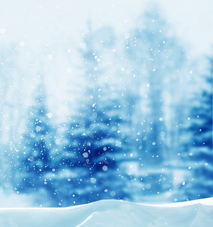 wintry landscape: winter background