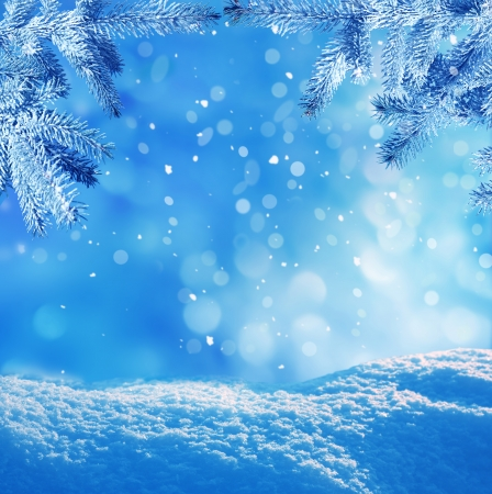 paysage hiver: fond l'hiver