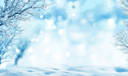 wintry: winter background