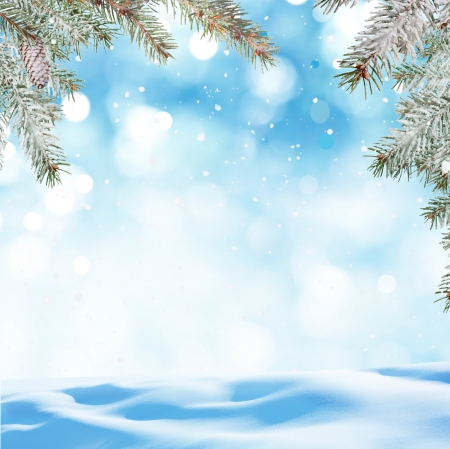 fond l'hiver