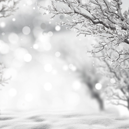 neige noel: fond l'hiver