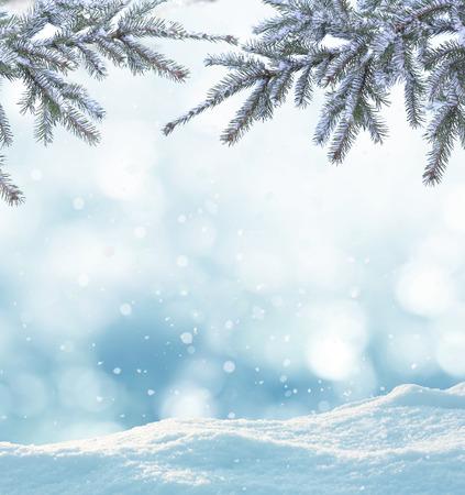 zimní pozadí