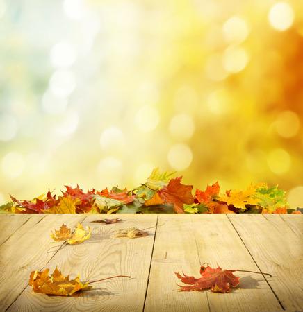 autumn background  photo