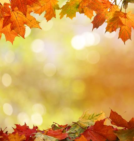 fond d'automne Banque d'images