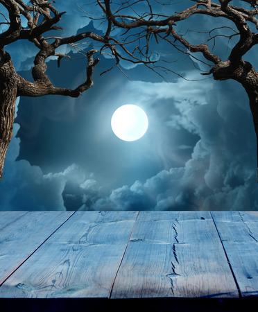 foret sapin: Arri�re-plan de Halloween