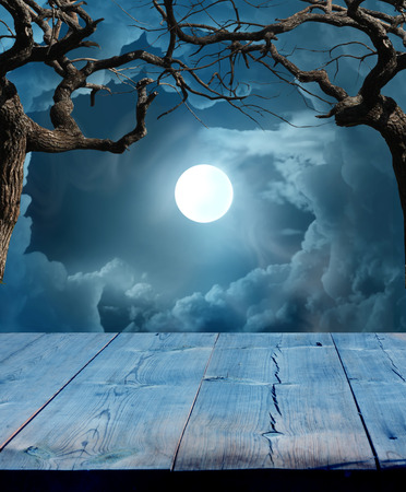spooky: Halloween Background  Stock Photo