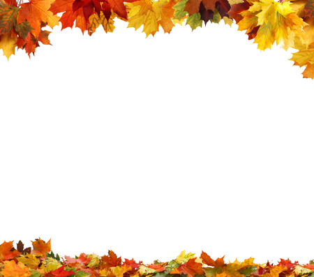Isolated autumn leaves Stock Photo