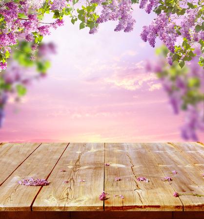 나무 테이블과 함께 봄 배경 스톡 콘텐츠