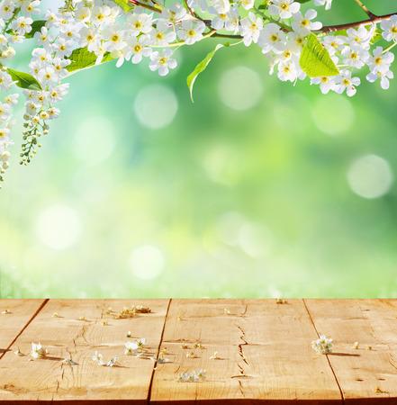 primavera: primavera de fondo con tablones de madera Foto de archivo