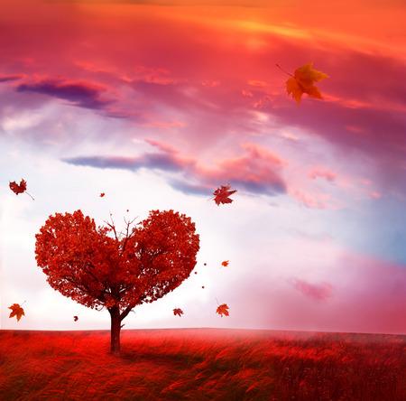 Paysage d'automne avec l'arbre de l'amour