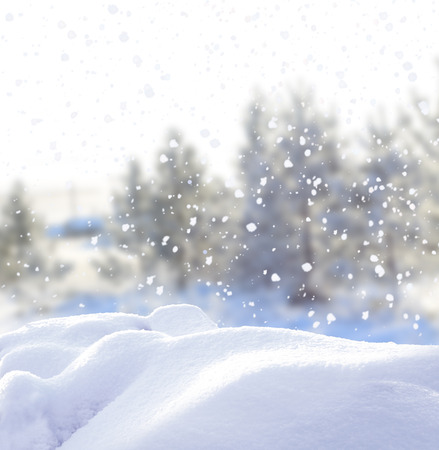 wintry landscape: Christmas winter background with snow
