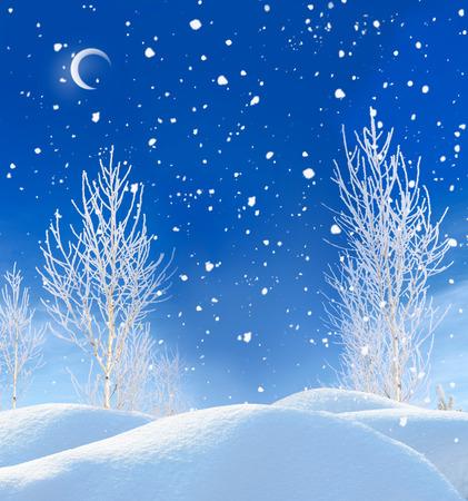 beautiful winter night landscape photo