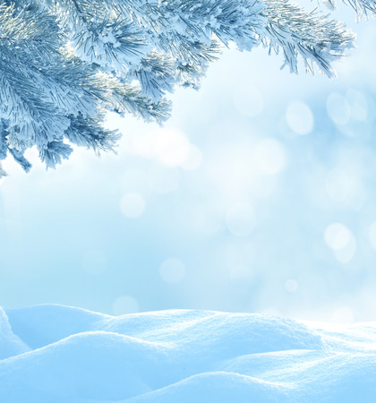Christmas winter background photo