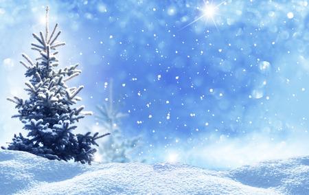 winter christmas landschap Stockfoto
