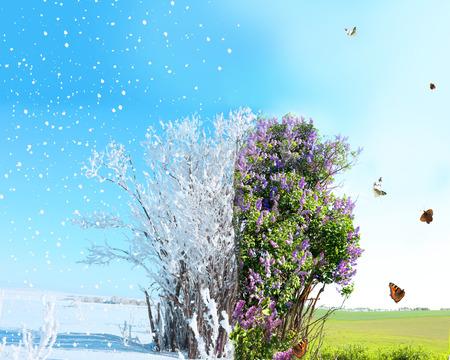 Season change from winter to spring Archivio Fotografico