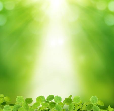 St パトリック日の背景 写真素材