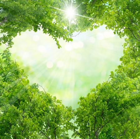 緑のハート形を葉します。 写真素材