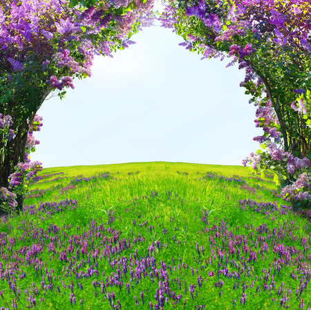 natural arch: Magic spring forest Stock Photo