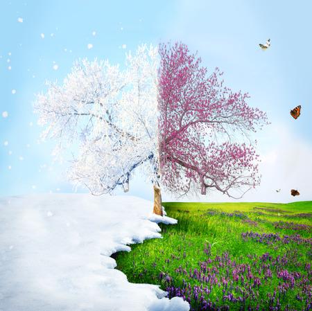 겨울의 계절 변화는 봄합니다 스톡 콘텐츠
