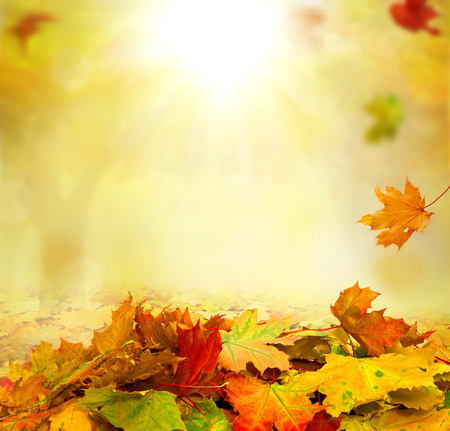 background orange: autumn background Stock Photo