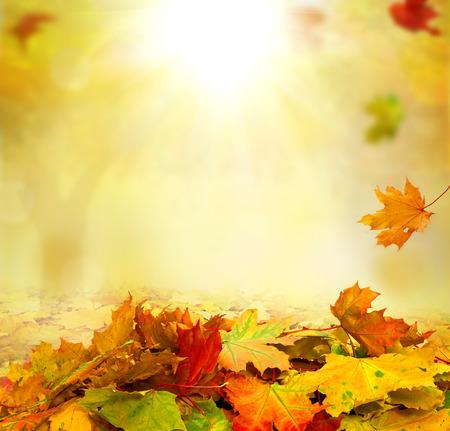 autumn background Foto de archivo
