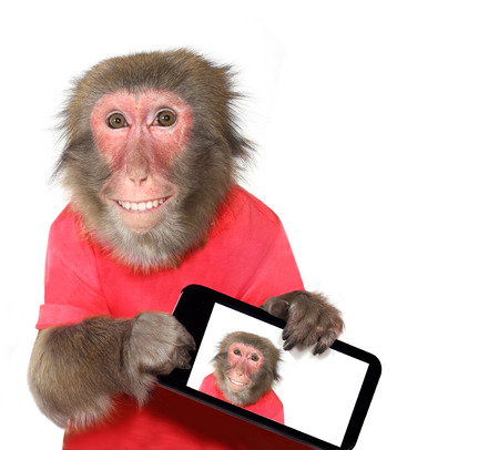 toy phone: Funny monkey taking a selfie and smiling at camera Stock Photo