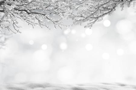 冬クリスマス背景 写真素材
