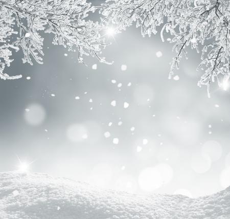 snow scenes: winter christmas background Stock Photo