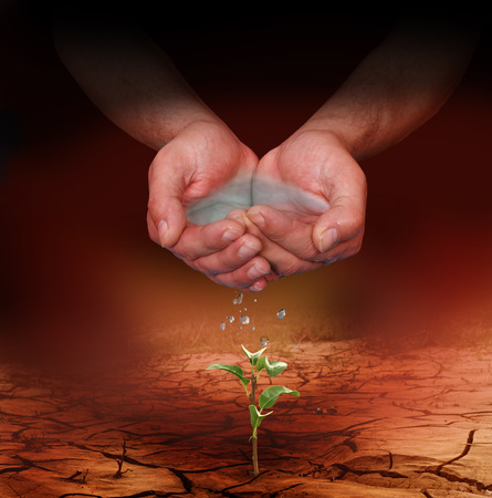 earth pollution: Hands watering a young plant growing trough dead ground Stock Photo