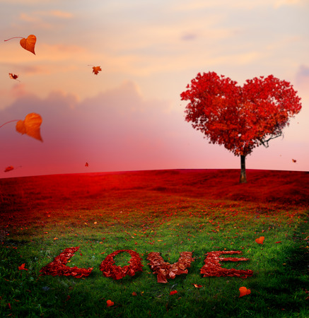 Tree of love in autumn. Red heart shaped tree at sunset.Autumn season concept.Beautiful landscape with red tree and falling leaves.Love bacground