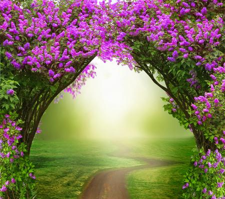 Fantasy achtergrond. Magisch bos met weg. Mooie lente landschap. Lila bomen in bloesem Stockfoto