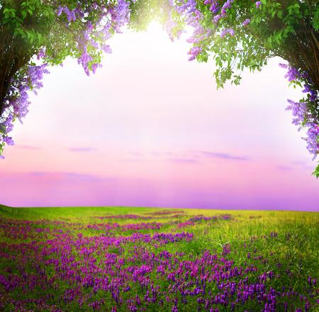 ファンタジー背景。魔法の森。美しい春の風景。ライラックの木の花