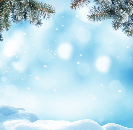 Christmas background with fir tree branch.Winter landscape Stock Photo