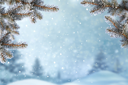 Christmas background with fir tree branch.Merry Christmas and happy New Year greeting card with copy-space.Winter landscape with snow  스톡 콘텐츠