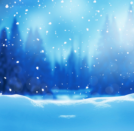 Christmas background with fir tree branch.Winter night landscape 스톡 콘텐츠
